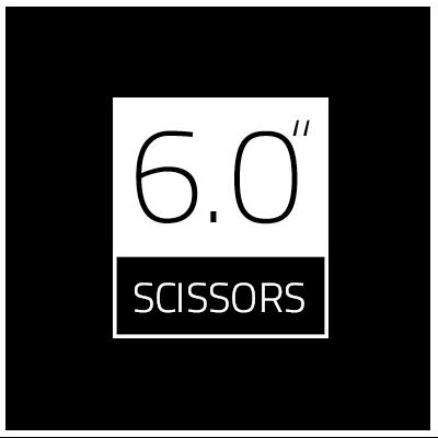 6.0 inch